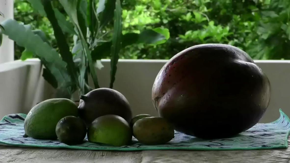 mango-najwieksze naswiecie