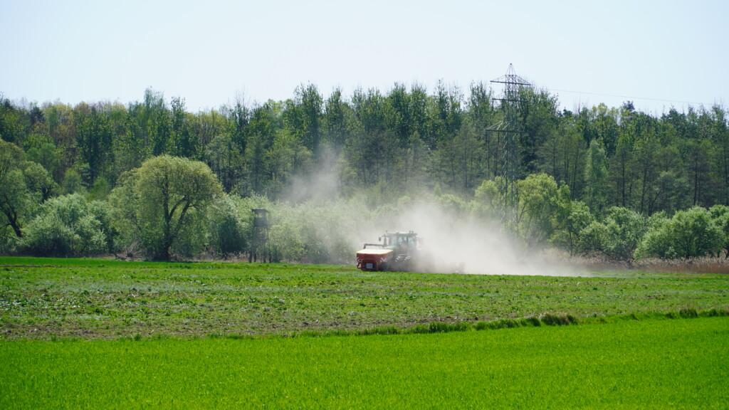 w trakcie siewu - rekord kukurydzy