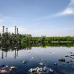 Rekord Polski czyszczenie rzeki