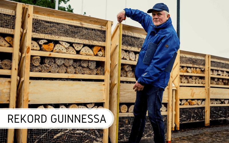 Największy dom dla owadów rekord Guinnessa